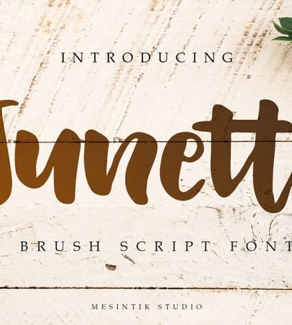 Olivient - Handwritten script font - Dezign Ark (Beta)