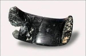 Cea mai veche bijuterie descoperită pe Terra (1)