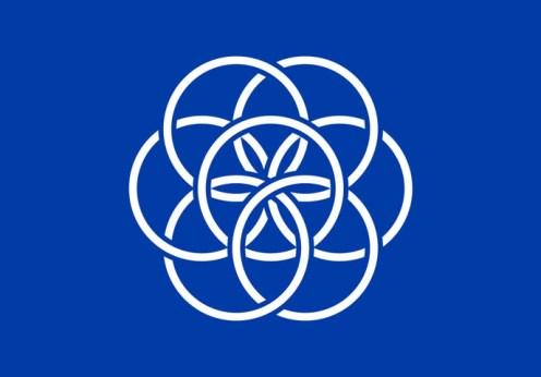 Drapelul planetei Terra