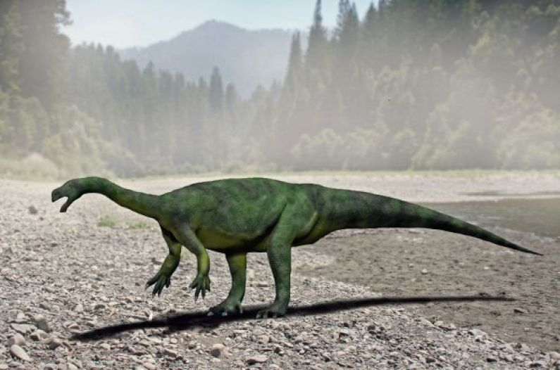 Aardonyx celestae, autor Nobu Tamura, sursa Wikipedia.