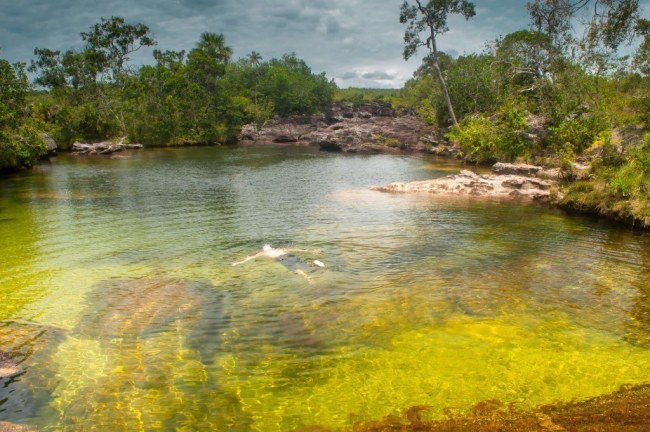 Cano-Cristales-nadar-es-posible
