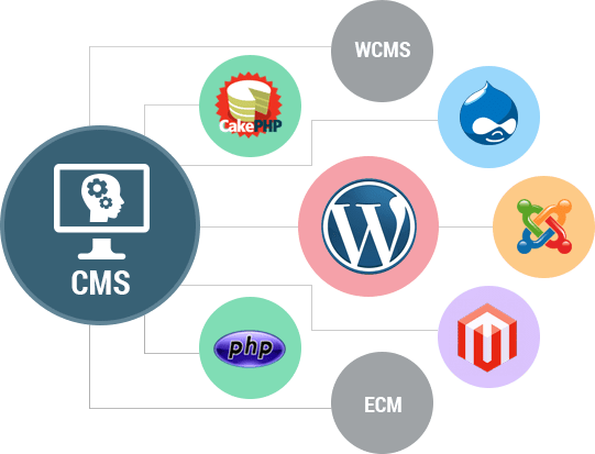 Inside Look – the state of CMS Community in Africa.