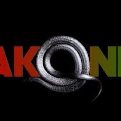 Akon Wakanda Mp3 Download