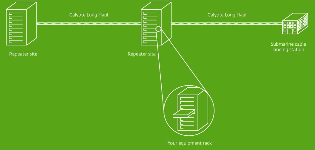 Calypte Long Haul Architecture_Diagram