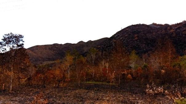A burnt fire in Walelagama, Wamena, Asrida Elisabeth