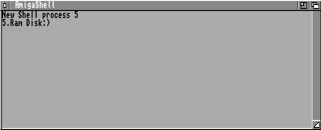 Common AmigaDOS commands