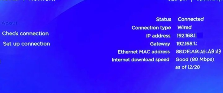 Where is the Roku IP address?
