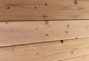can you stain pine to look like oak