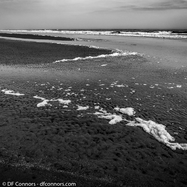 South Carolina - Hilton Head Island - 2018 —— Image:  2018-01823