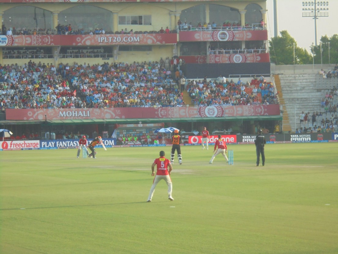cricket4