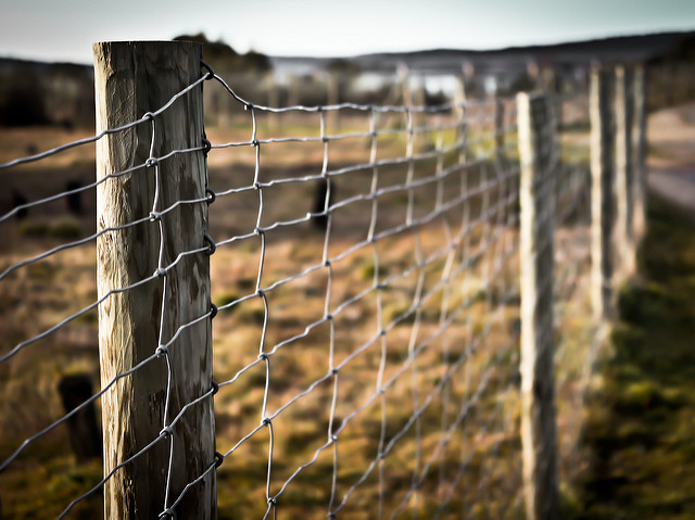 Multi-Site Ministries: Fences and Freedom