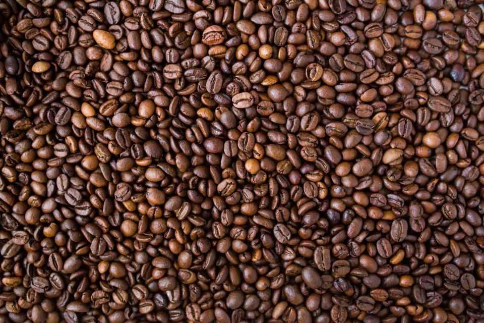 brown cocoa