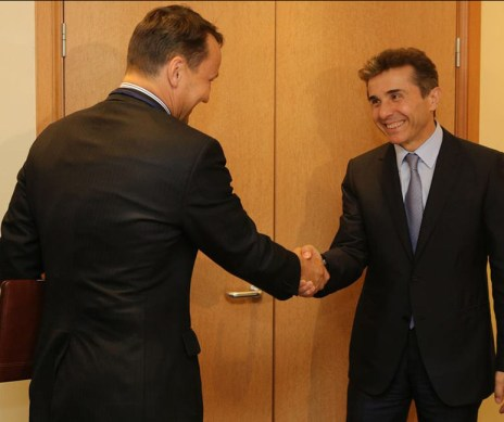 Georgia's Prime Minister meets with the Polish Foreign Affairs Minister (official photo)