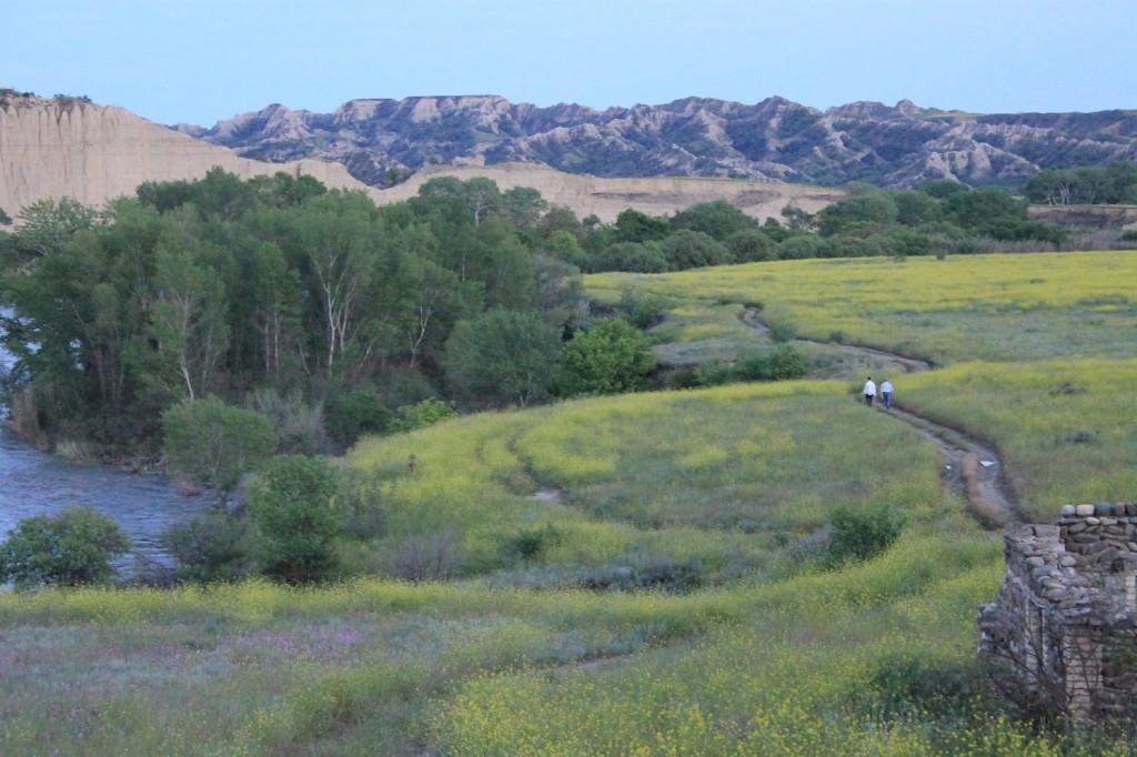 Landscape of Vashlovani.
