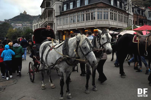 horse_and_carriage_tbilisoba_2015