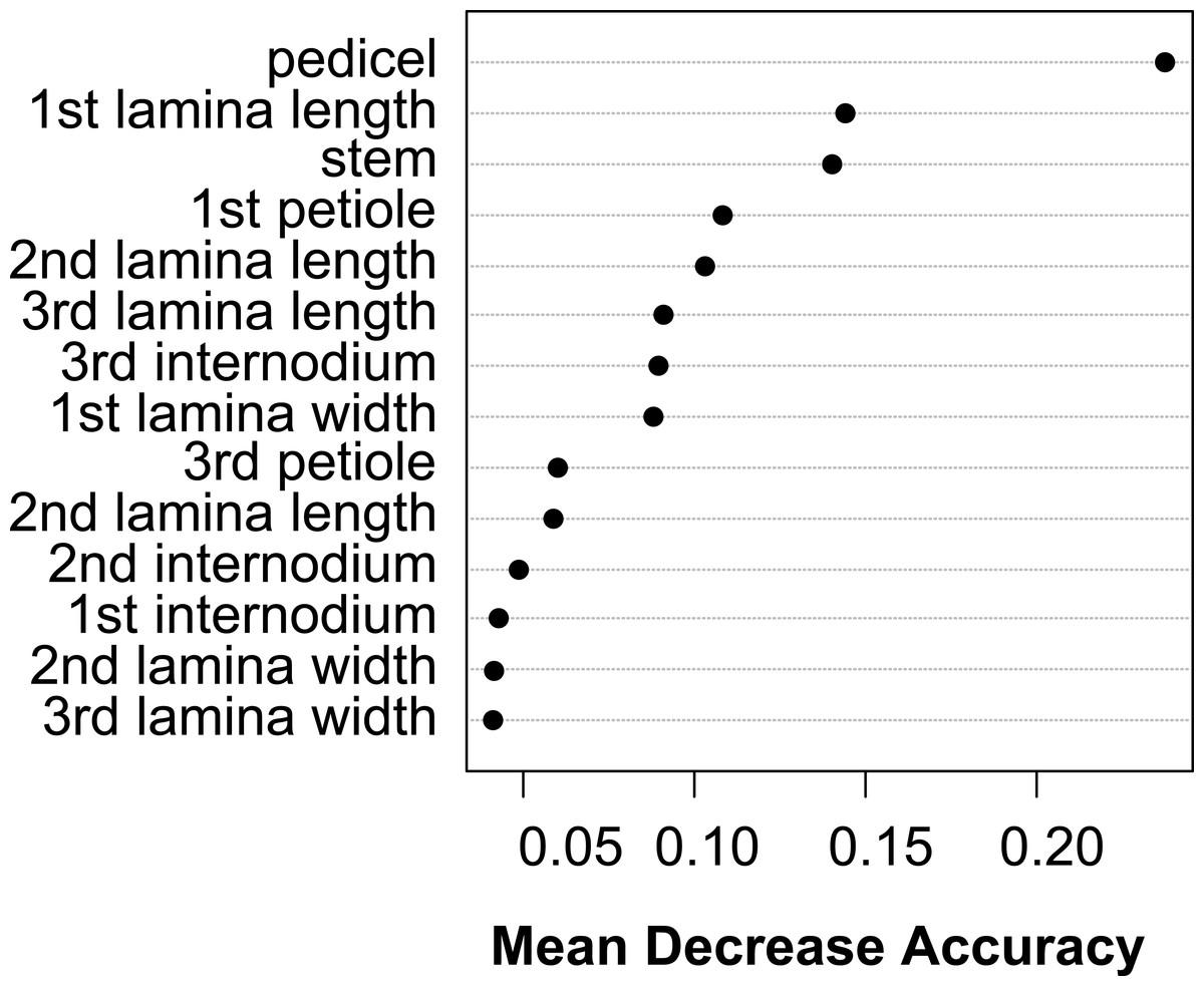 Flood Induced Phenotypic Plasticity In Amphibious Genus