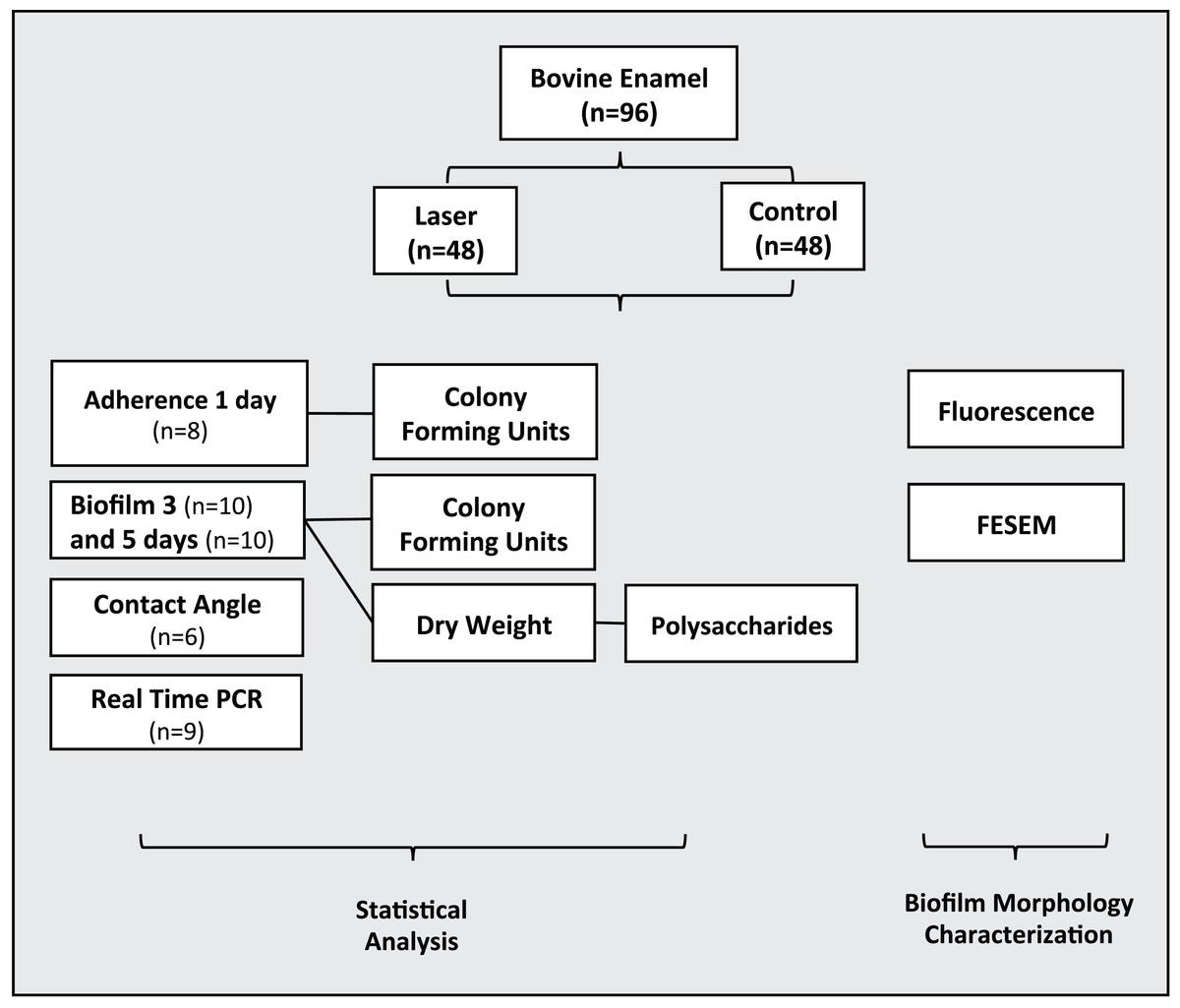 Effects Of Co2 Laser Irradiation On Matrix Rich Biofilm