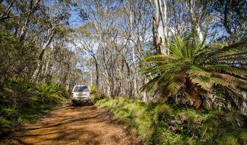 Barrington Trail NSW