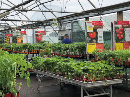 Jardin Fleuri – Signalétique magasin