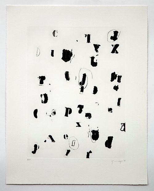 Debris Field I by Glenn Ligon