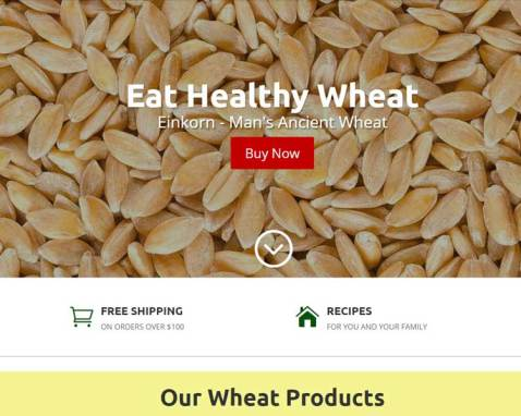 Eat Healthy Wheat