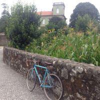 fotocycle [232] o ciclista é um fingidor