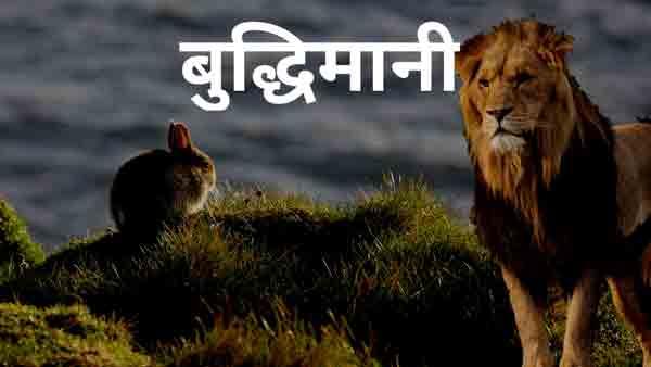 Read more about the article विपरीत परिस्थिति में बुद्धिमानी – हिंदी कहानी