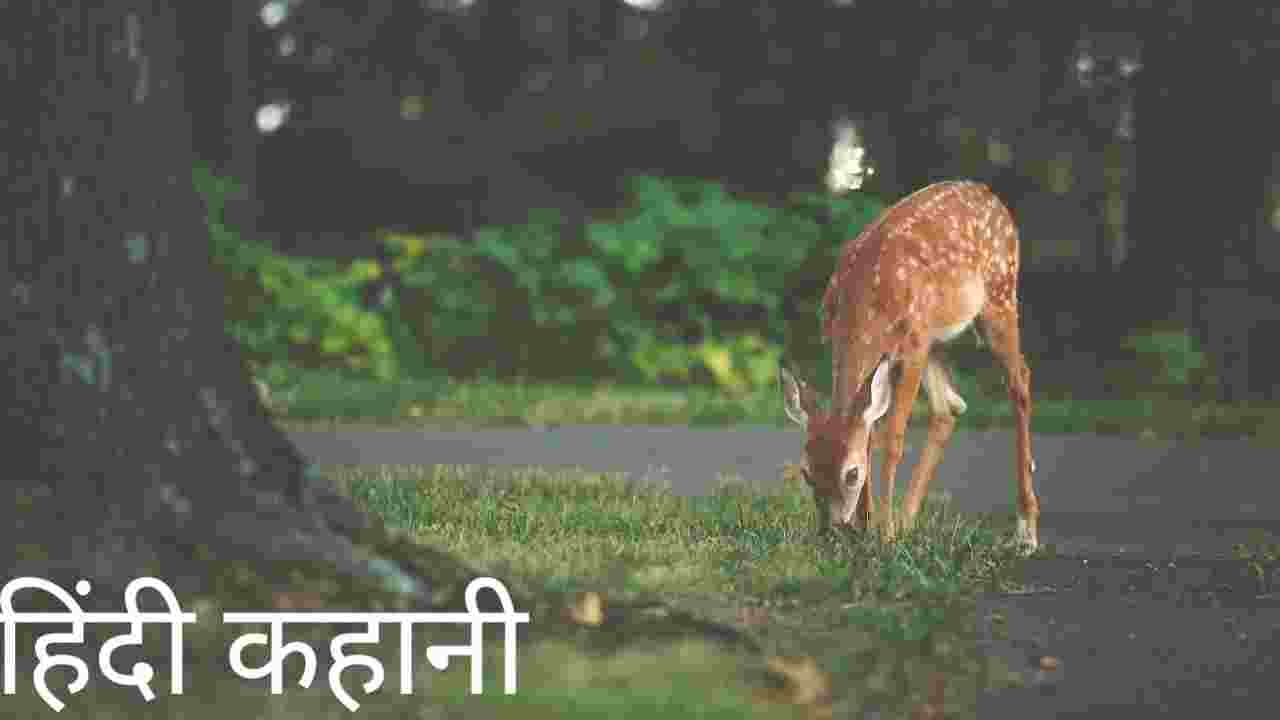 Read more about the article गर्भवती हिरनी की कहानी