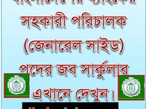 Assistant Director General Side Job Bangladesh Bank