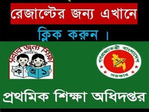 PSC Scholarship Result 2017 Download