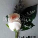 Code: WBO290