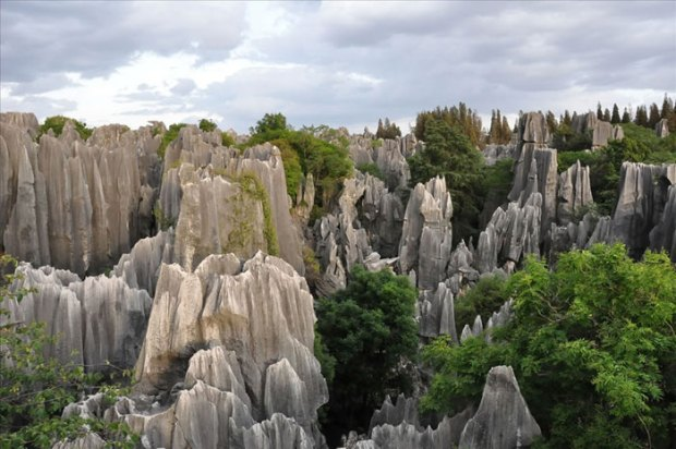Stone-Forest-China13