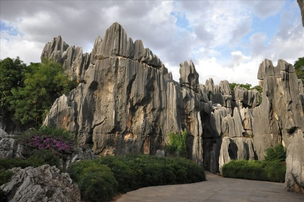 Stone-Forest-China16