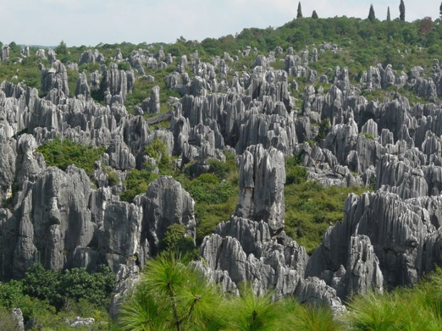 Stone-Forest-China7