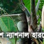 Bangladesh National Herbarium