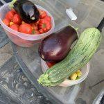 Big Garden Harvest and Nice Vegetable Casserole
