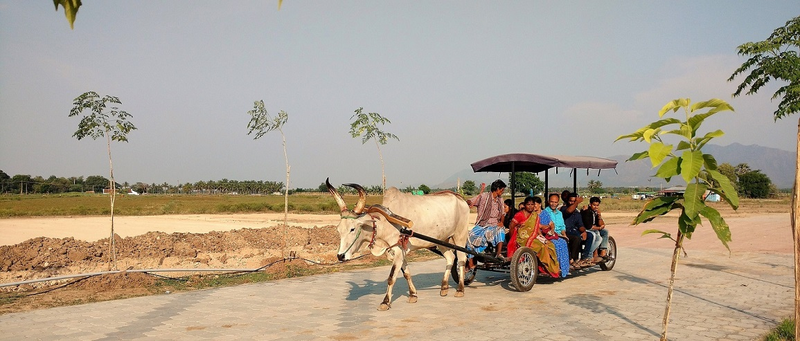 A Bullock pulling a cart with 10 People
