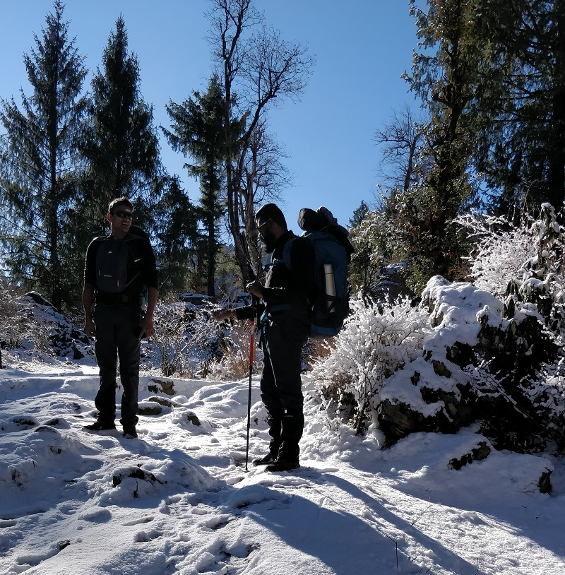 Trekking through Oak forests