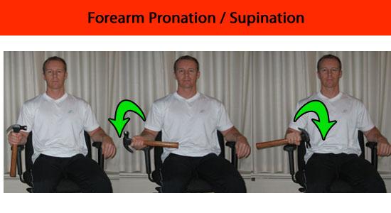 forearm pronation supination exercise
