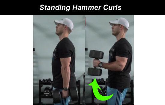 standing hammer curls