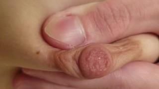 Milking nipples up close