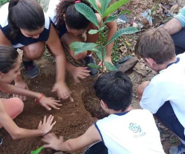 Crianças plantam mudas de árvores na beira do Rio Itapemirim