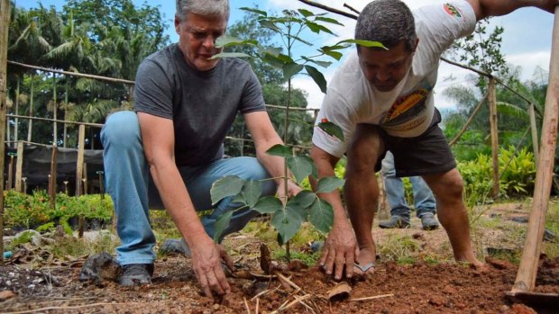 Verde aos poucos volta ao centro de Cachoeiro por iniciativa de ONG e voluntários