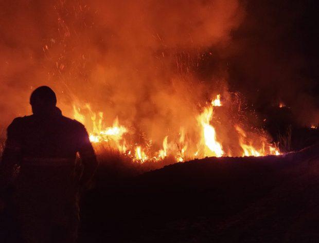 Incêndio em vegetação deixa casas em risco no município de Muniz Freire