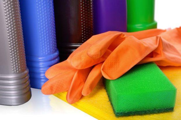 Mundo Pet: tutor de animais deve ficar atento a produtos de limpeza