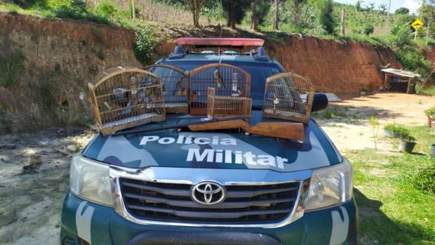 Polícia Ambiental apreende pássaros silvestres e arma em Muniz Freire