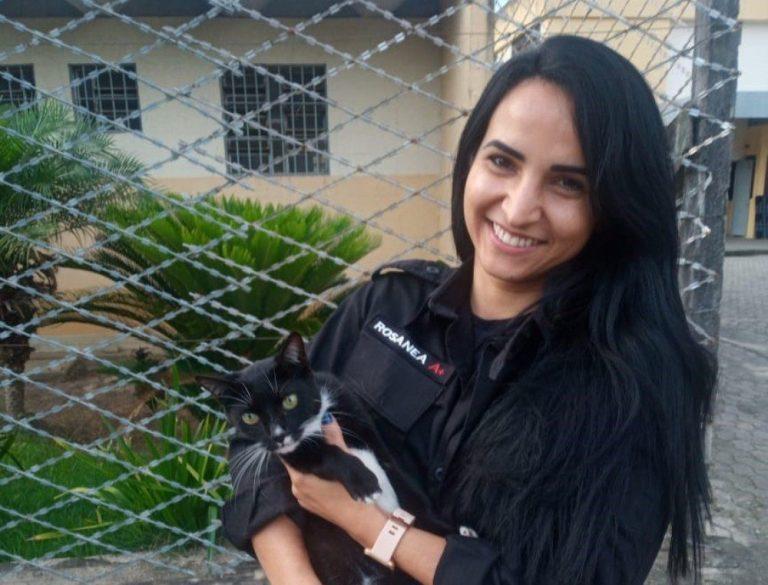 Gata vira mascote de presídio feminino em Cariacica