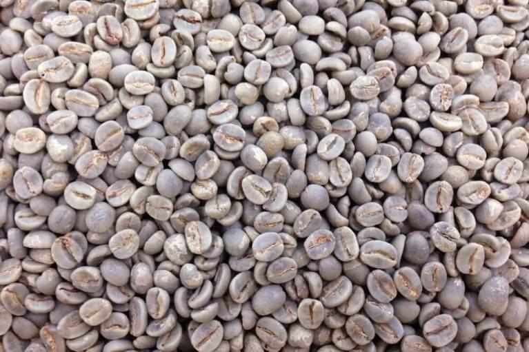 Jerônimo Monteiro promove amostra de café especial