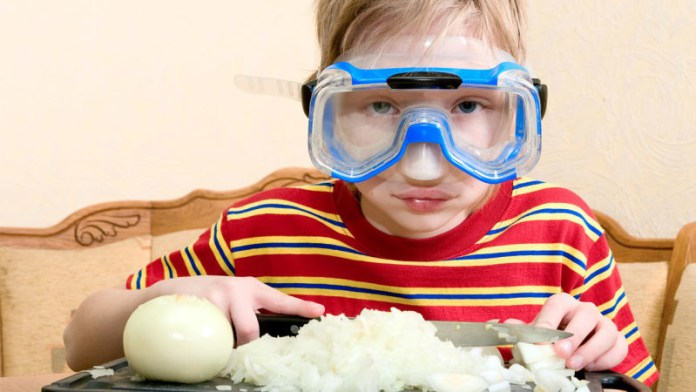 Hasil gambar untuk Memakai Kacamata Renang saat mengiris bawang