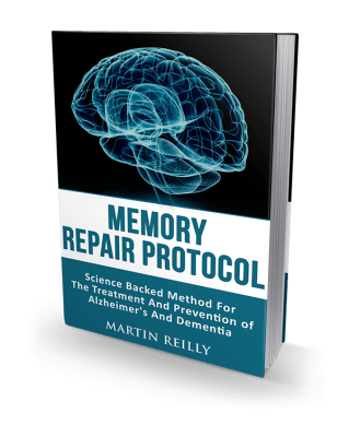 Memory_Repair_Protocol_program